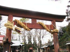 鳥居に巻き付く蛇しめ縄(熊野神社・所沢市西新井町)