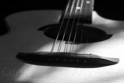 Reub Guitar III