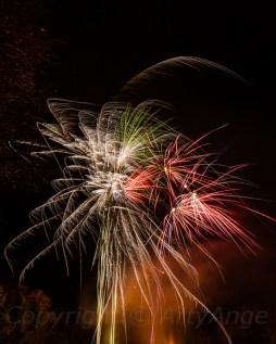 Fireworks at Chelsea Park