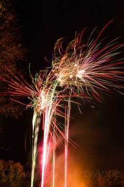 Fireworks at Chelsea Park-3