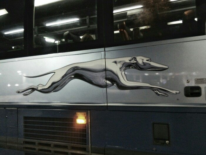 Greyhound konpainiaren autobusa.