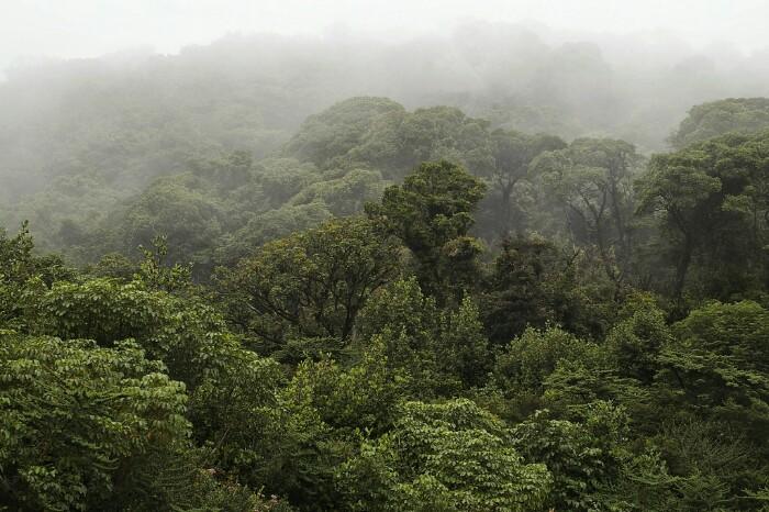 Poás. Costa Rica.