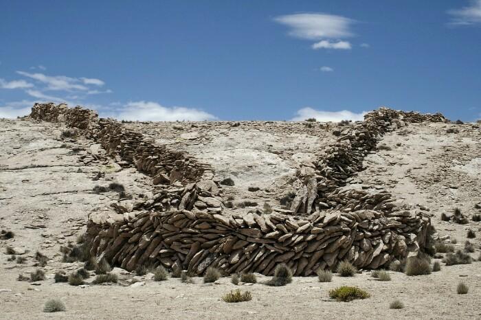 Chaccu: bikuinak harrapatzeko artea, inken garaikoa. Lauca Parke Nazionala. Putre, Txile.