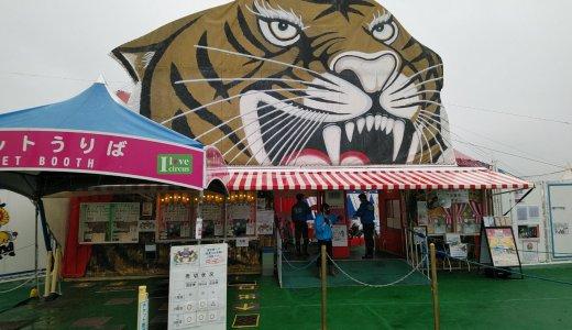 【体験記】木下大サーカスin広島に行ってきたよ!混雑は?コロナ対策は?注意点は?子供は楽しめた?
