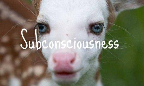 Subconsciousness鹿の子ども