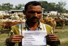 Photo of BSF apprehended Cattle Smugglers with 425 Cattles