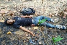 Photo of One KLO cadre killed, Two managed to escape  in an encounter