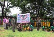 "Photo of Army's Mega Plantation Drive -""plant trees, save life"""