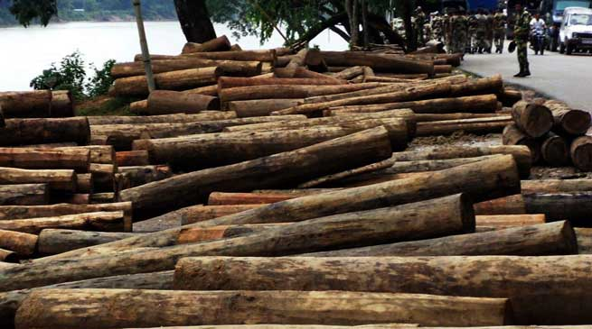 BSF Seized Huge Quantity Of Wooden Logs from Meghalaya