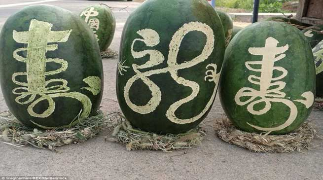 Chinese Fruit Vendor Finds Novel Way to Sell Watermelons