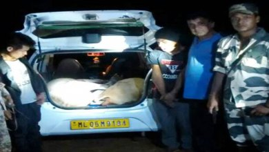Photo of BSF nabbed two Cattle Smuggler, seized one Alto Car