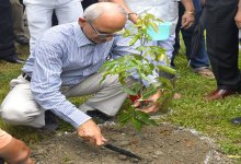 Photo of NF Railway Observes World Environment Day