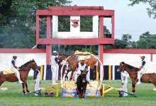 Gajraj Corps organises basic Horse Riding & Animal Management Camp