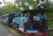 Darjeeling Himalayan Railway: Toy Train Service Resumed
