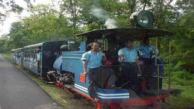 Photo of Darjeeling Himalayan Railway: Toy Train Service Resumed