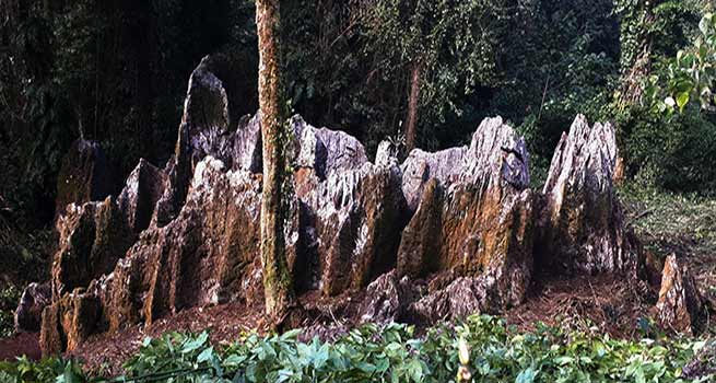 A natural Shivalingam discovered  in Arunachal's Mountain