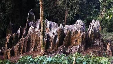 Photo of A natural Shivalingam discoveredin Arunachal's Mountain