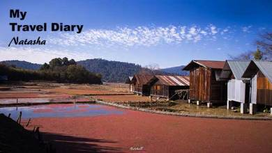 Photo of Arunachal: A small Village in Ziro….SIIRO
