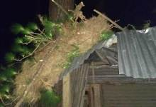 Itanagar: Heavy wind lashes capital complex and Naharlagun