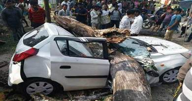 Arunachal : Tragic Road accident, Big tree fell down on a Car