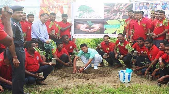 Arunachal: NDRF planted 500 sapling at Hollongi campus