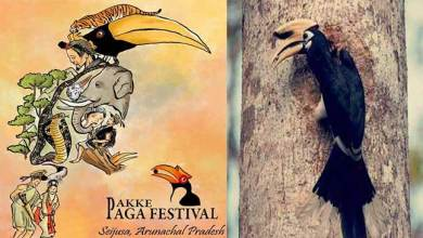 Photo of Arunachal:Pakke Page Hornbill festival to be held in grand way