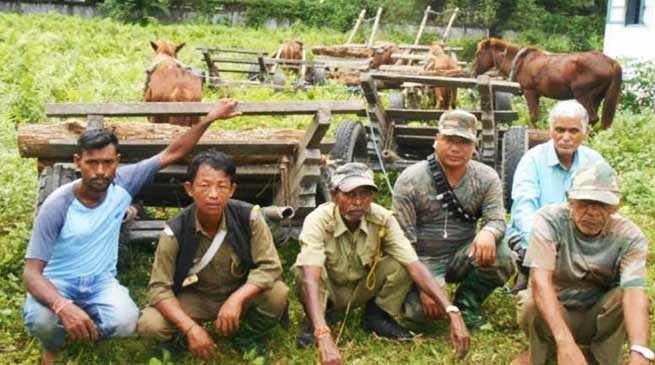 Arunachal: DFO Lohit seized huge quantity of Khair wood