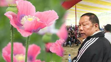 Photo of Arunachal: Congress will form the next govt and legalise poppy cultivation – Takam Sanjoy