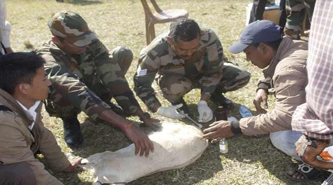 Arunachal:  Army Organises Veterinary camp in Namsai