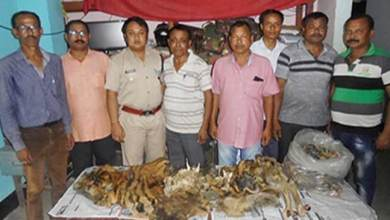 Photo of Arunachal: 3 arrested with Tiger Skin and Organs