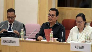 Dy CM Chowna Mein attends Pre-Budget Consultation Meeting in New Delhi
