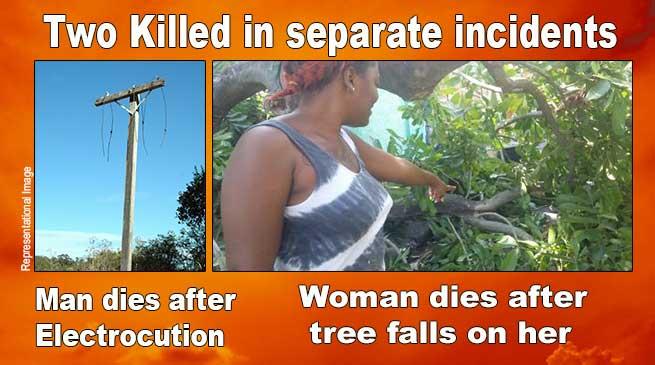 Arunachal:Man electrocuted in Chimpu, woman dies after tree falls on her