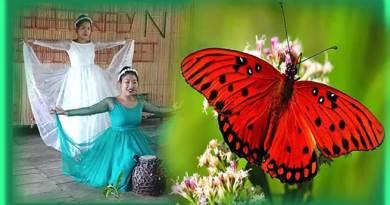 Arunachal: 3 day long Butterfly & Biodiversity Meet begins at Ledum