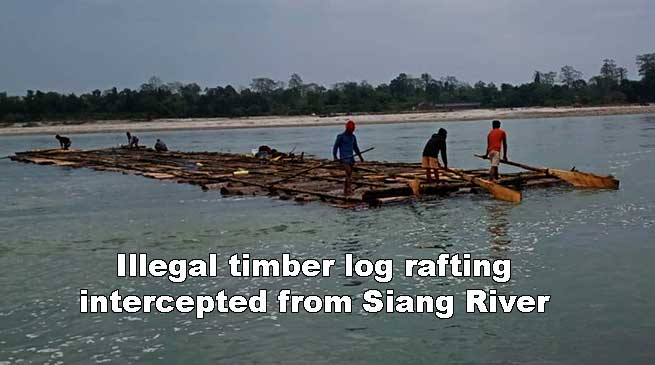 Arunachal: Illegal timber log rafting intercepted from Siang River