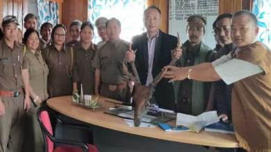 Novel initiative: ABK Secretary surrenders home decorative Sambar horn and Bear hook to the forest dept