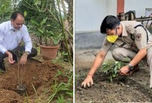 Itanagar- APP planted 4500 saplings across the state
