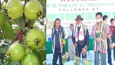 Arunachal: Agriculture Minister launches Organic Lalit Guava at Yachuli