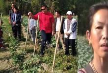 Itanagar: IMC Mayor visits Tai Ania's vegitables farm