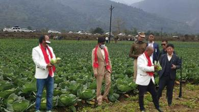 Arunachal towards Aatma Nirbhar, Ministers visit Cluster farming site at Bana