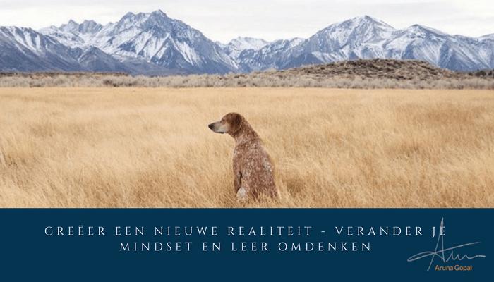 Creëer een nieuwe realiteit – verander je mindset en leer omdenken
