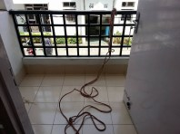 We tie a rope to the my mom's balcony, in case we can't use the stairs if a quake hits. The 3 of us together plan and prepare so we can carry on with our work daily.
