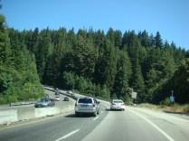 Winding Highway 17