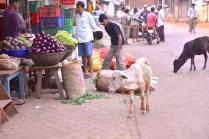 pics of vegetable stall Kumta by Arun Shanbhag