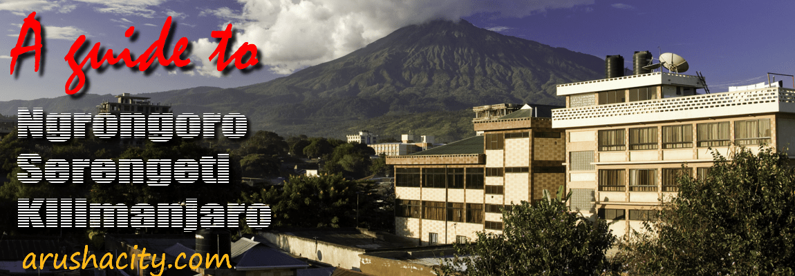 Arusha-City-Guide-Website-Banner
