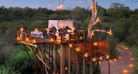 LionSands_TreeHouse_450x240.jpg