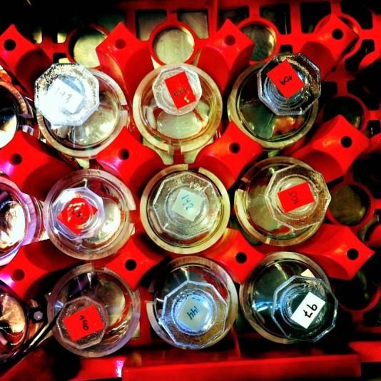 Water samples (Photo: Ann E. Lennert).