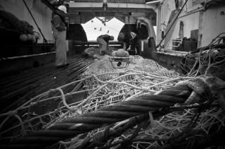 Working on deck (Photo: Valentina Lanci).