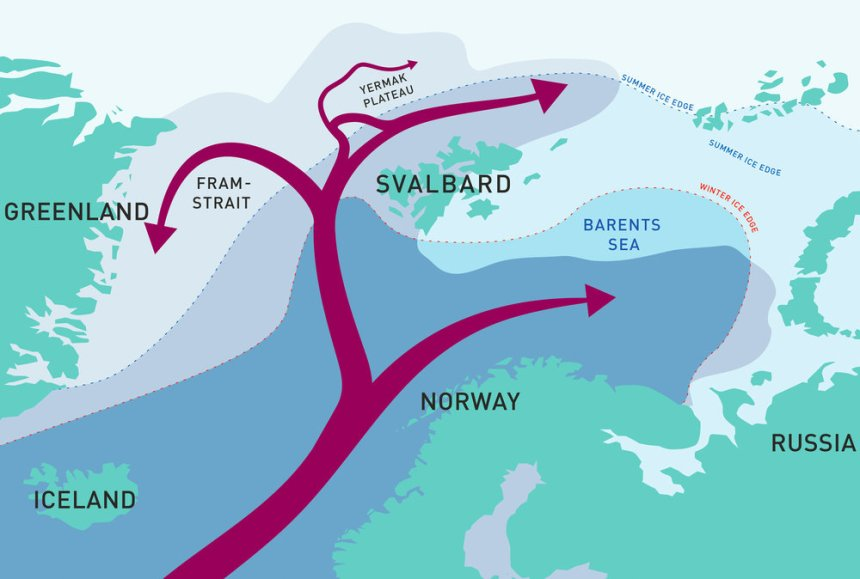 Atlantic Water flows into the Arctic with the continuation of the Gulf Stream and splits into several smaller currents. The star indicates where the A-TWAIN array is moored north of Kvitøya. Illustration: Reibo / Arild Sundfjord, Norwegian Polar Institute and Angelika Renner, Institute of Marine Research