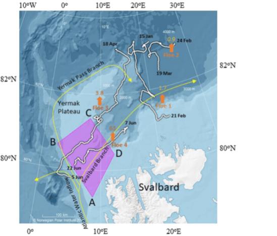 warm Atlantic water melts sea ice outside Svalbard