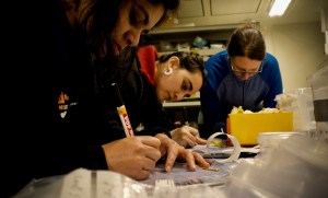 Some of the benthos team labelling and preparing samples before they get muddy. (Photo by Eric Jorda Molina)